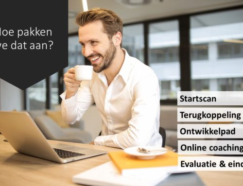 E-coaching voor young professionals